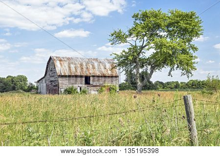 A rustic old barn stands by a weathered old tree in rural Madison County Ohio.