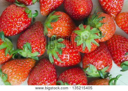 Group of red strawberry fruit on wooden board (Other names are Fragaria strawberry Fragaria ananassa)