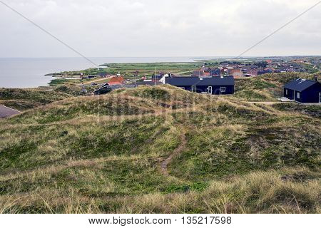 Grassy dunes near Hvide Sande the North Sea in Jutland Denmark