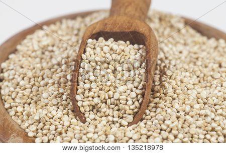 Quinoa On White Background