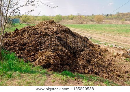 Pile of manure, great fertilizer, countryside shot