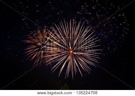 Brightly Colorful Fireworks And Salute Of Various Colors In The Night