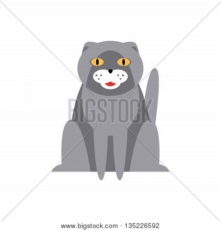 Persian Cat Breed Primitive Cartoon Illustration In Simplified Vector Design Isolated On White Background