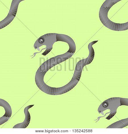 Grey Snake Seamless Background. Animal Pattern. Attack Crawling  Danger Predator