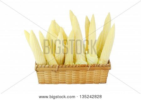 baby corn in basket isolated on white background