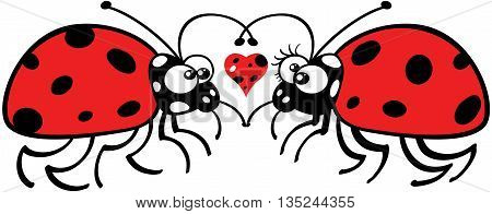 Lovely couple of ladybugs staring at each other tenderly and forming a big heart with their antennae. A funny spotted heart is floating between them
