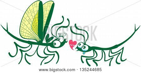 Cute couple of stick insects showing a male making a painful declaration of love by weeping and showing a broken heart while the female looks surprised, doubtful and not concerned