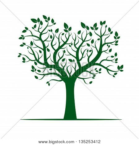 Green Color Tree. Vector Illustration and graphic element.