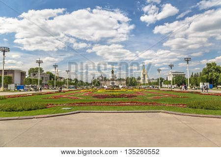 A flower bed with colorful flowers on a background of blue sky with clouds in the park