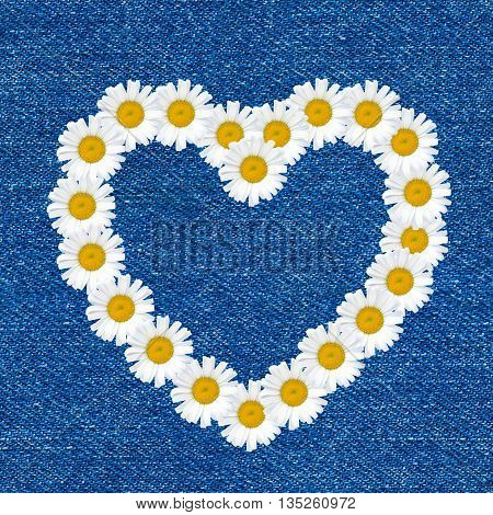 Heart made of daisy flowers seamless pattern on blue jeans background