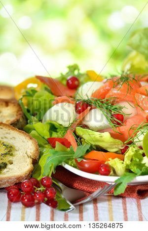Fresh summer salad with honeydew melon balls and smoked wild salmon, served with toasted ciabatta bread with herb butter
