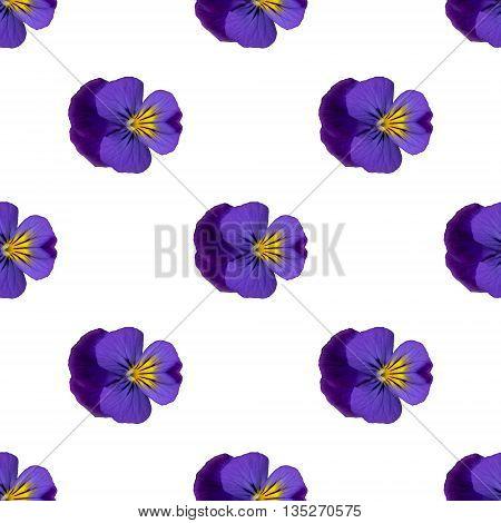 Purple Pansies Seamless Repeat Pattern