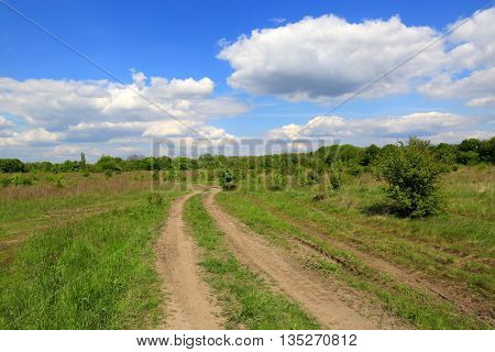 landscape with rural road in steppe