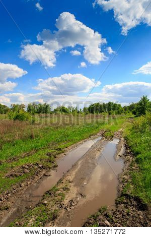 landscape with rut road with puddles in steppe in nice summer day