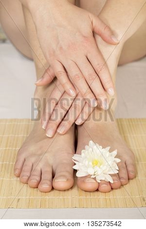 Beautiful female feet and hands / Spa treatment
