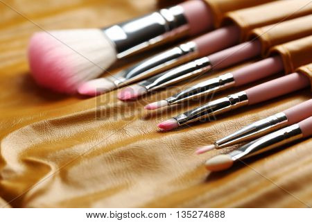Makeup Brush Set In The Brown Case