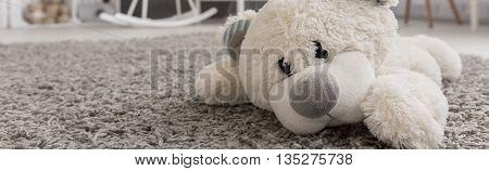 This Teddy Bear Belongs To Baby