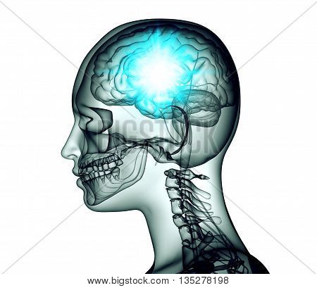 Xray Image Of Human Head With Brain And Electric Pulses