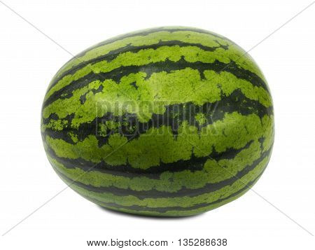 Big green watermelon isolated on white background