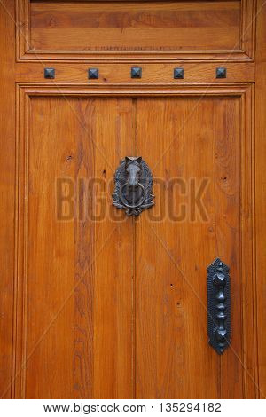 Wood Door with Attractive Horse Door Knocker. Great for real estate promotions, or for horse enthusiasts.