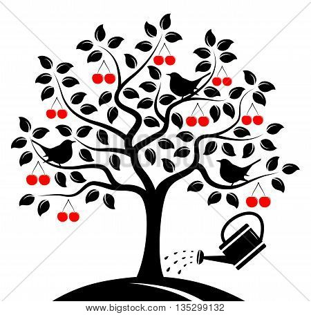 vector cherry tree with birds and watering can isolated on white background