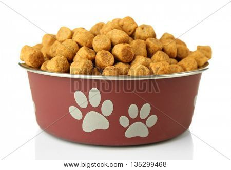 Dog food in metallic bowl on white background