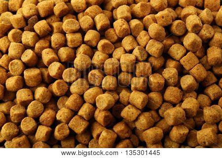 Dry dog food background