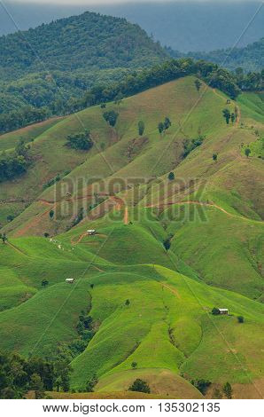 Landscape of mountain at Nan province in Thailand. The period beginning rainy season.