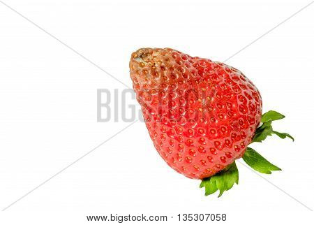 High resolution image of rotten strawberries closeup