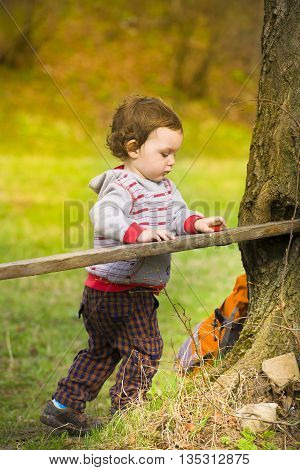 Little Boy Playing Near The Logs.