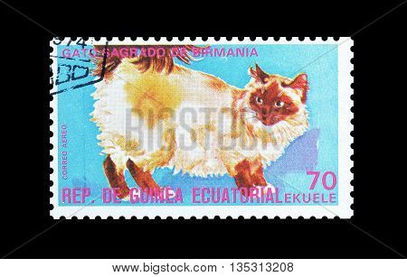 EQUATORIAL GUINEA - CIRCA  1974 : Cancelled postage stamp printed by Equatorial Guinea, that shows Burmese cat.