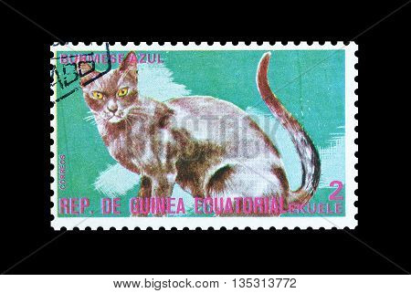EQUATORIAL GUINEA - CIRCA  1974 : Cancelled postage stamp printed by Equatorial Guinea, that shows Burmese blue cat.