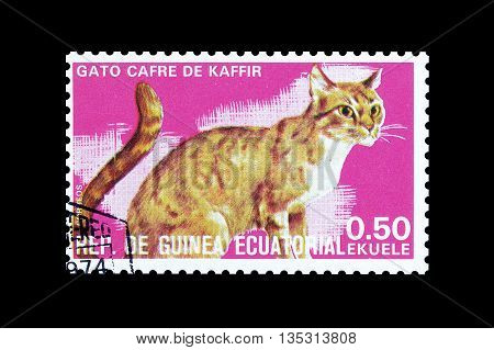EQUATORIAL GUINEA - CIRCA  1974 : Cancelled postage stamp printed by Equatorial Guinea, that shows Kaffir cat.