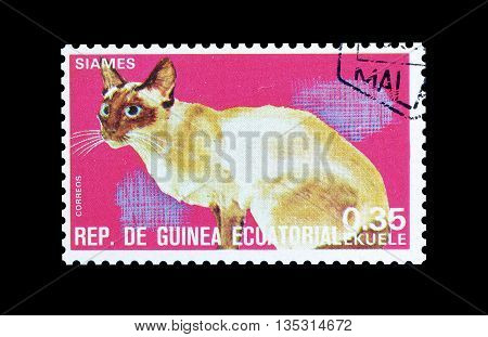 EQUATORIAL GUINEA - CIRCA  1974 : Cancelled postage stamp printed by Equatorial Guinea, that shows Siamese cat.