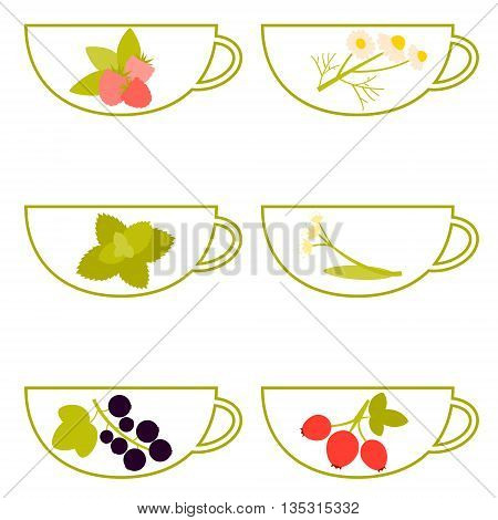 Herbal tea. A cup with raspberry, chamomile, mint, linden, currant and rosehip. Vector illustration