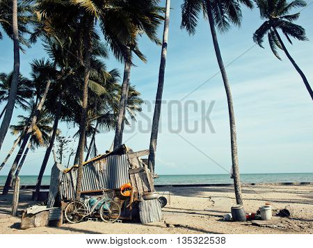 little vietnamese house on seacoast among palms and sand, poor fisherman home