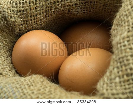 Close Up Three Egg In Sack