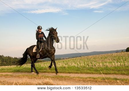 Equestrienne And A Horse.