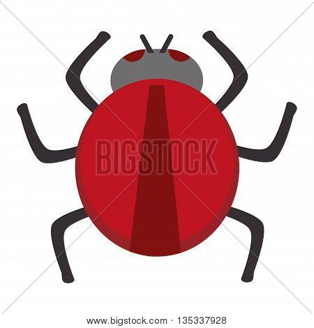 red round bug virus vector illustration flat style design