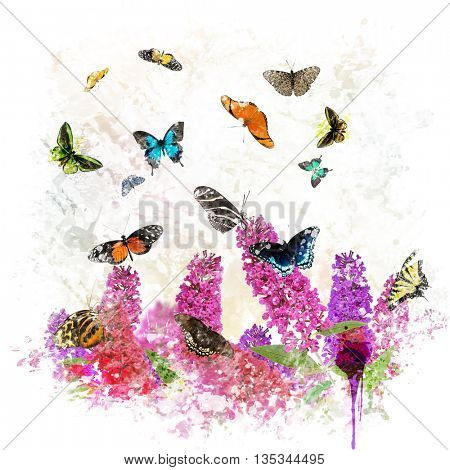 digital painting of  Butterflies and flowers