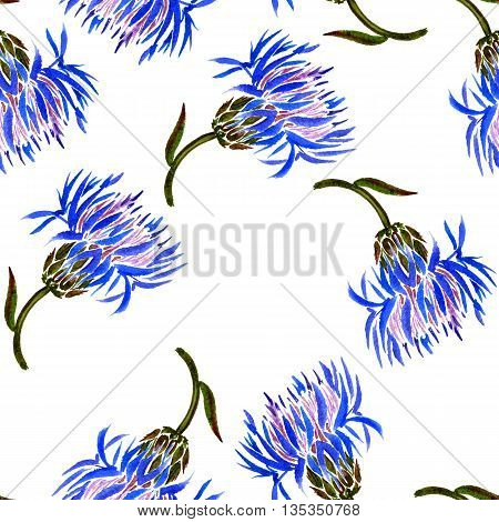 Seamless pattern with watercolor drawing wild cornflowers, bckground with painted wild plants, botanical illustration in vintage style, color drawing floral ornament, hand drawn illustration