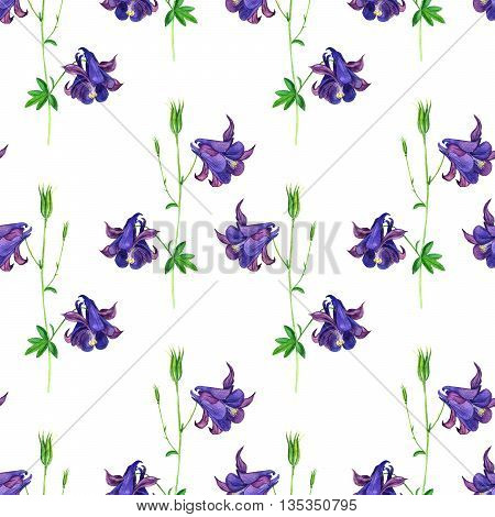 Seamless pattern with watercolor drawing flowers of delphinium, background with painted wild plants, botanical illustration in vintage style, color drawing floral ornament, hand drawn illustration