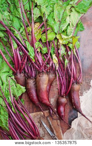 Fresh Beetroot On Wooden Surface. Fresh Picked Organic Beetroot