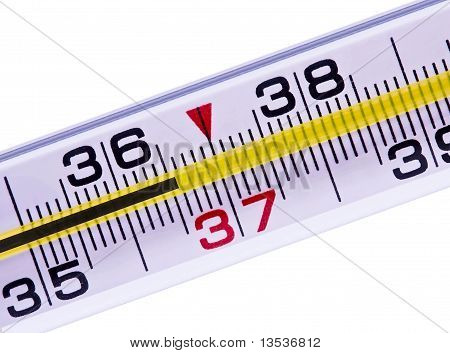 Thermometer Of A Body Normal Temperature