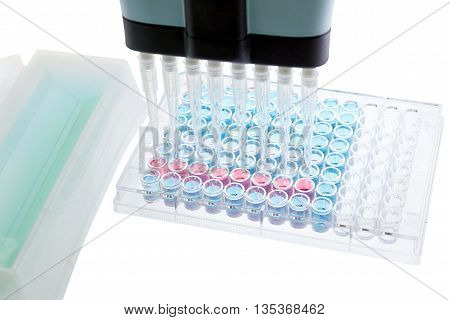 pipette test sample research test lab elisa ninety-six well plate analysis
