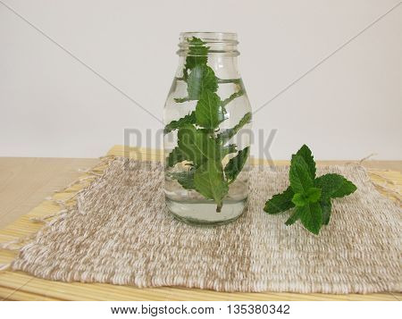 Homemade herbal water with mint leaves in bottle