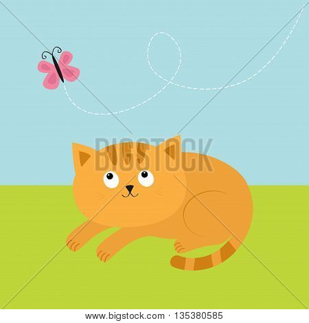 Cute red orange cat lying on grass and looking at flying pink butterfly. Dash line track in the sky. Mustache whisker. Funny cartoon character. Flat design. Vector illustration