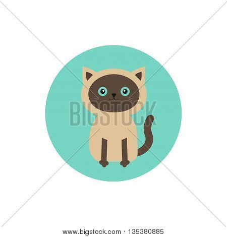Siamese cat round circle icon in flat design style. Cute cartoon character. Happy sitting kitten with blue eyes. White background. Isolated. Vector illustration