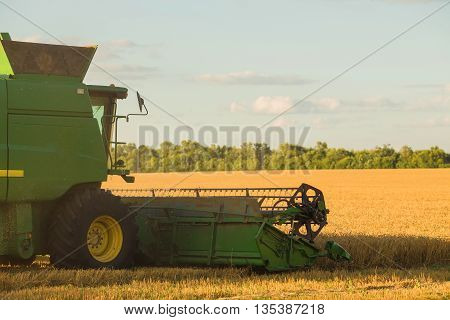 Harvesting combine in the field cropping cereal field
