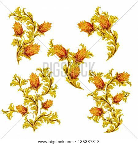 Old style stylized flowers and leaves swirls gold braiding set on a white background isolated.